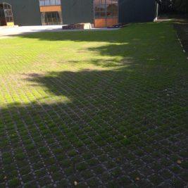 CellPave HD - Grass 03